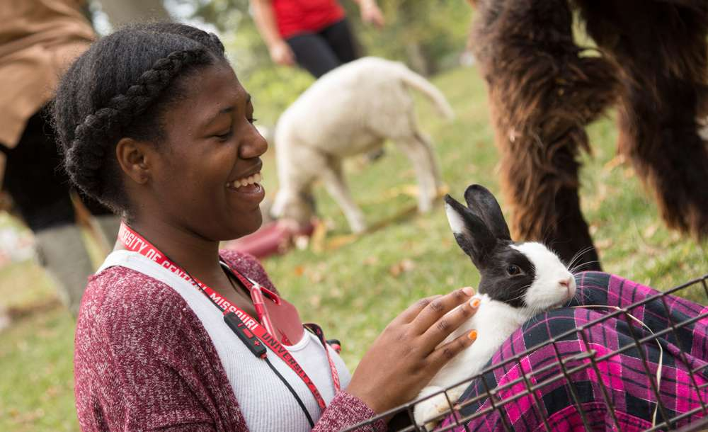 student petting a rabbit at UCM Goes Wild